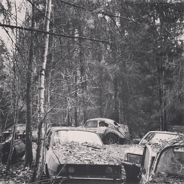Car graveyard (at Haukijarvi)
