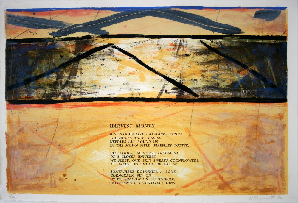 72 APIT p4 1996 lithography 38x57cm copy.jpg