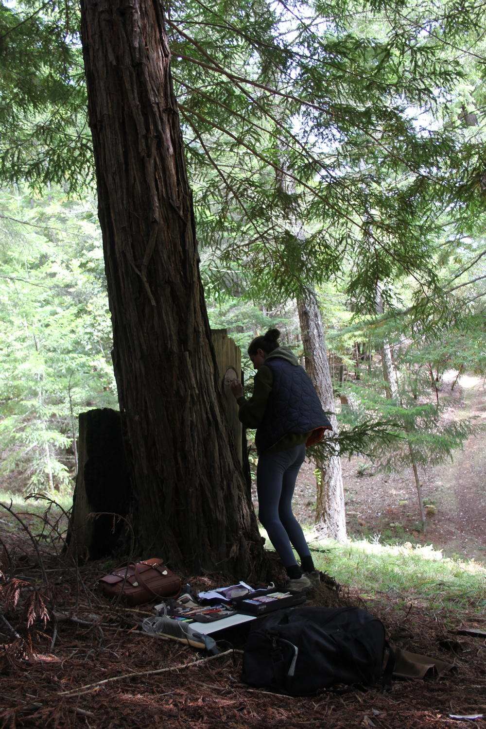 Claudia Bicen begins work on a series of portraits in the woods.