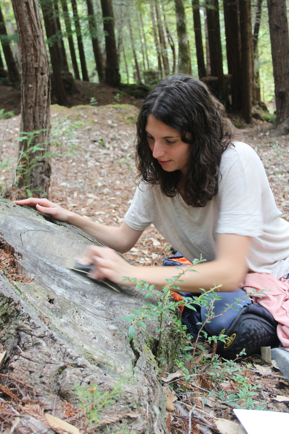 Claudia Bicen prepares surfaces for her portraits in the woods.