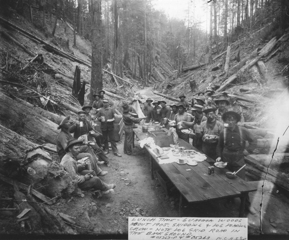 Logging crew 1905