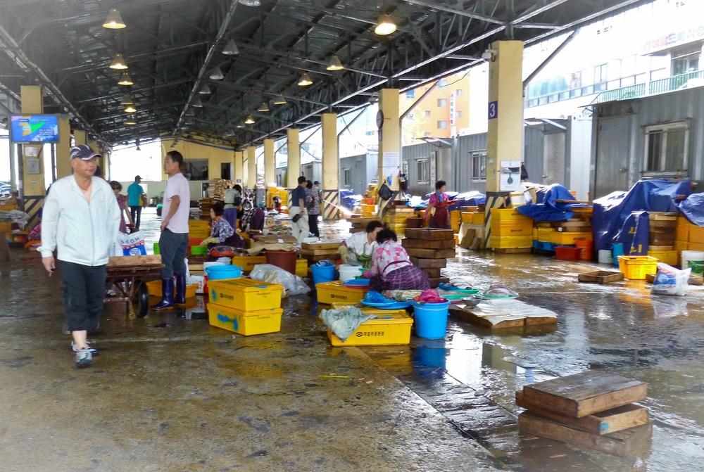 pusan fish market 2.jpg