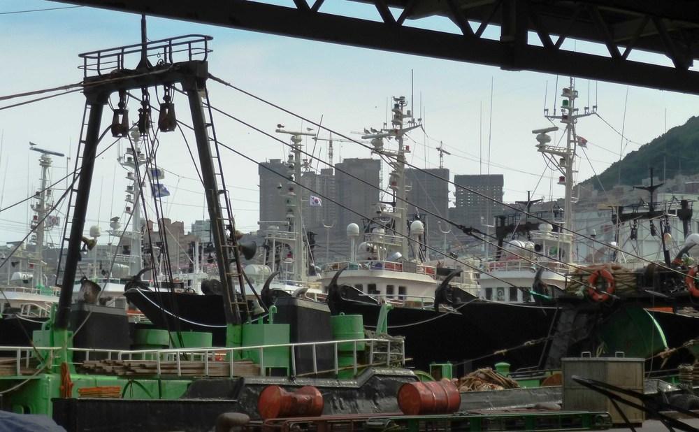 pusan shipyard.jpg