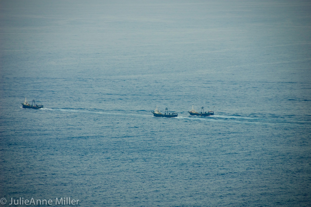 shrimp boats returning.jpg