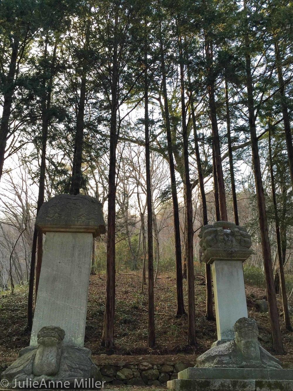 memorials and trees.jpg