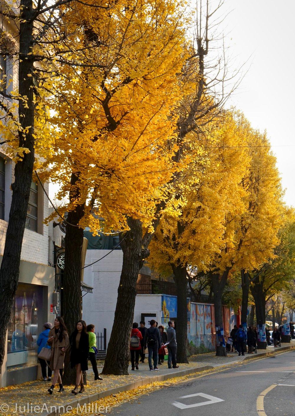 Samcheong Road