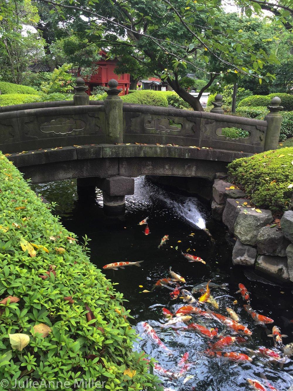 tokyo's oldest stone bridge at Asakusa temple garden