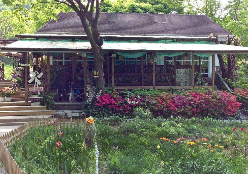 강마을아람쥐 도토리국구 Restaurant