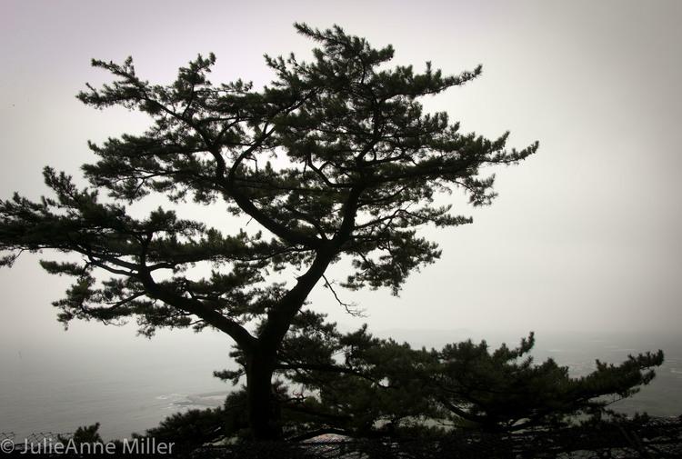 Sanbang Grotto, Jeju Island