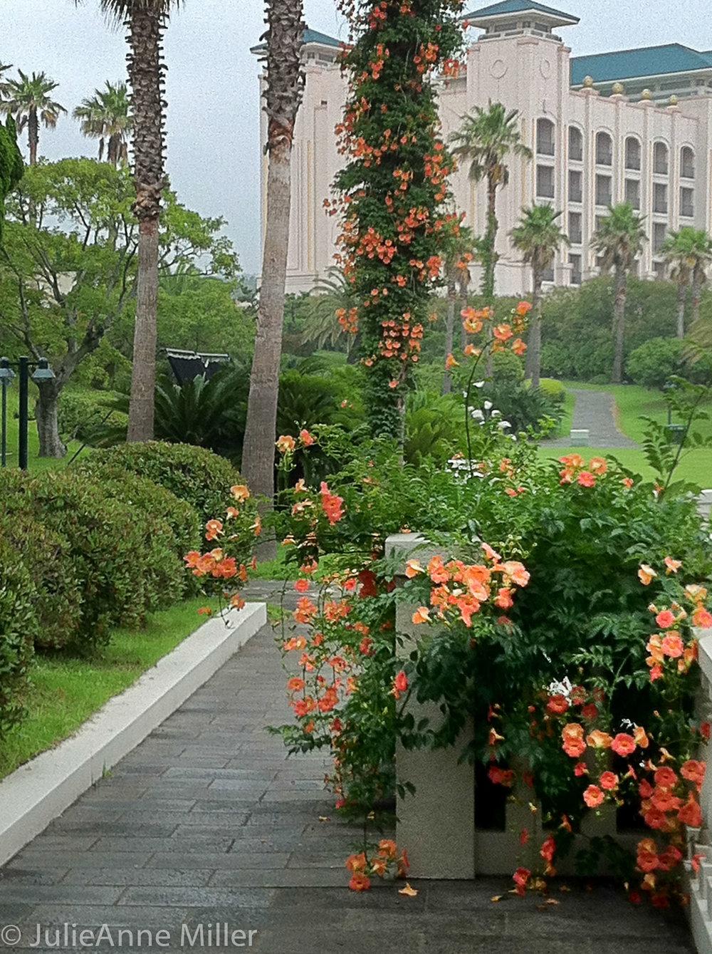Shilla Hotel, Jeju Island, Korea