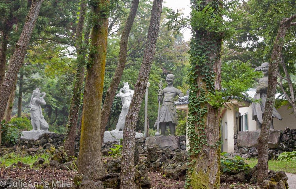 Bijarim Forest, Jeju Island, Korea