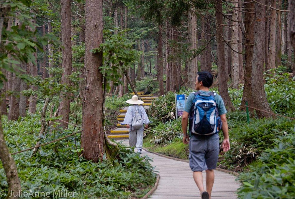 hiking Halla San, Jeju Korea