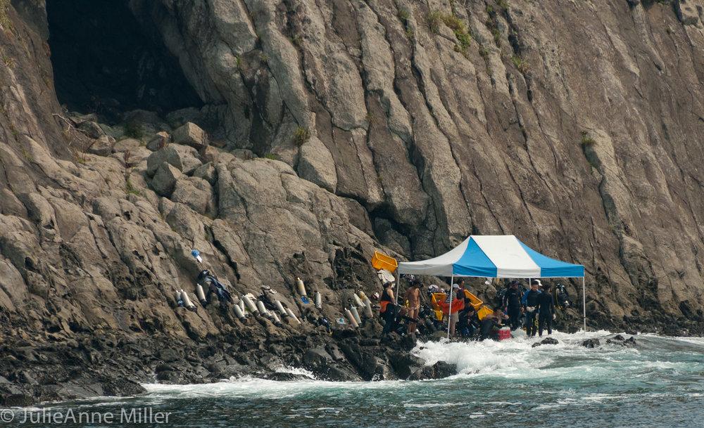 divers at Jeju Biosphere Reserve, South Korea