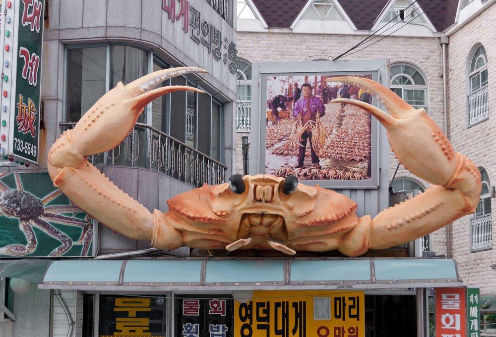 Yeongdeok (영덕), Ganggoo Harbor (강구항)