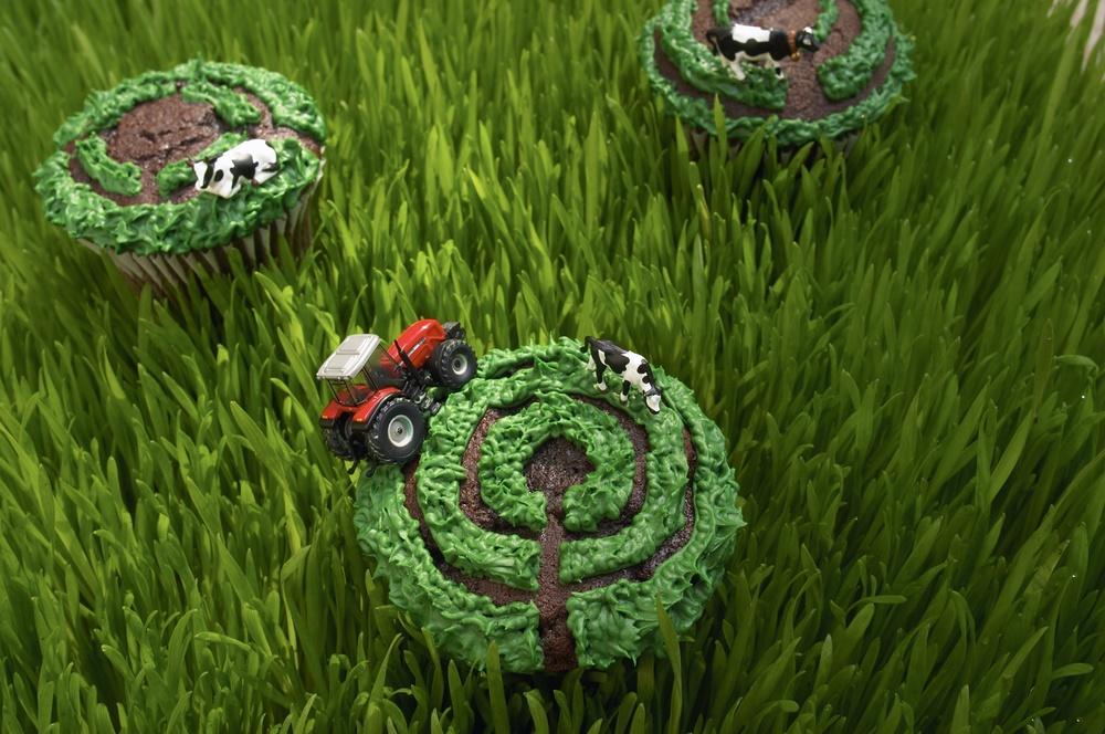 Crop Circle Cupcakes