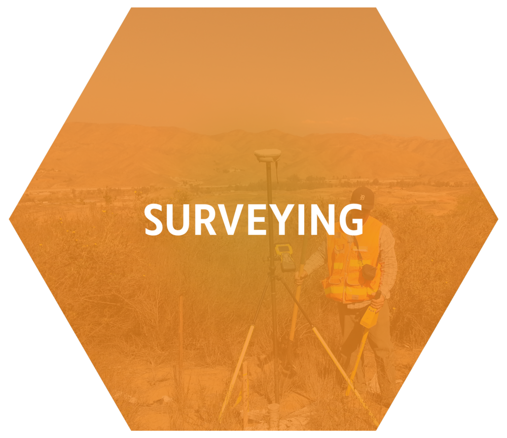 Survey Hover.png