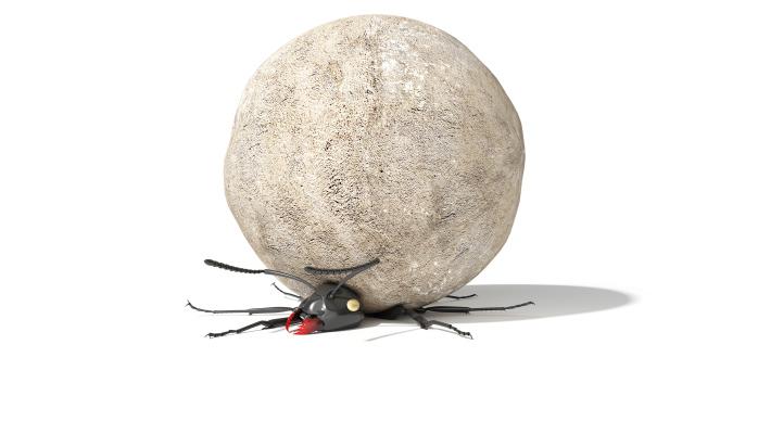 barefeet crush bugs