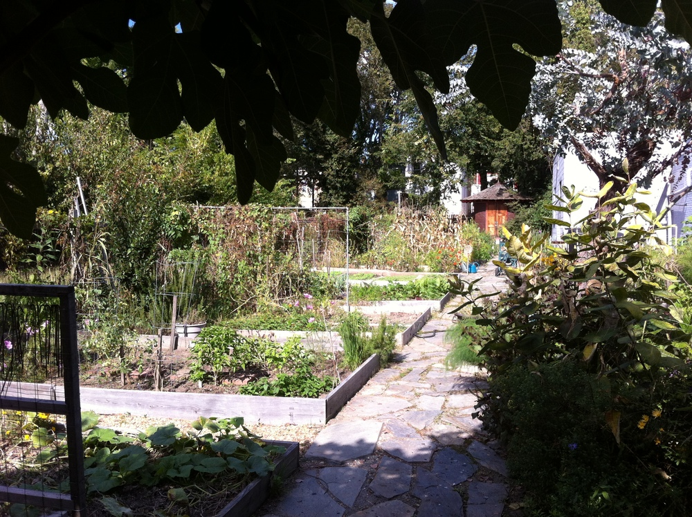 community garden in church hill