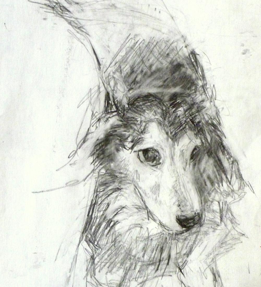 "Leo  Graphite on paper 4x6"""