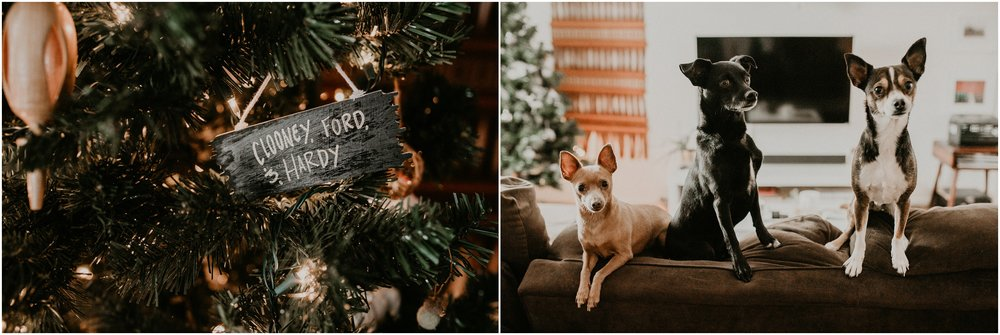 Boise Engagement Wedding Photographer Lifestyle Couples Session In home Dogs Christmas Winter