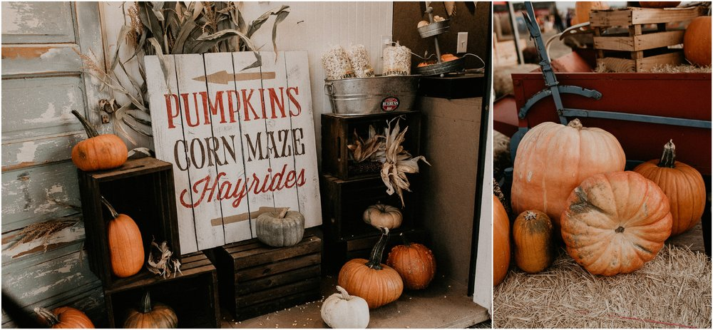 Boise Senior Boudoir Photographer Makayla Madden Photography Idaho Farmstead Corn Maze Fall Ideas Inspiration Corn Maze Meridian Pumpkin Patch