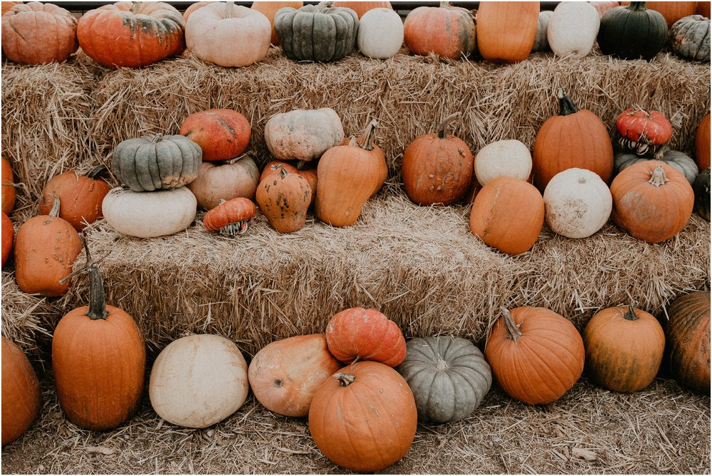 Boise Senior Boudoir Photographer Makayla Madden Photography Idaho Farmstead Corn Maze Fall Ideas Inspiration Corn Maze Meridian Pumpkin Patch Hay Bales Fall Aesthetic