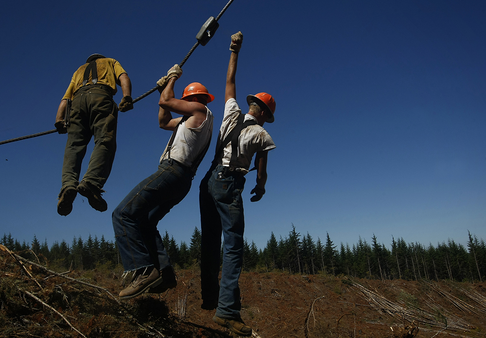 Loggers, from left, Jon Cunningham of Drain, Seth Williamson of Elkton and Justin Helgren of Elkton, work at a logging site outside Sutherlin.  Photo by Michael Sullivan