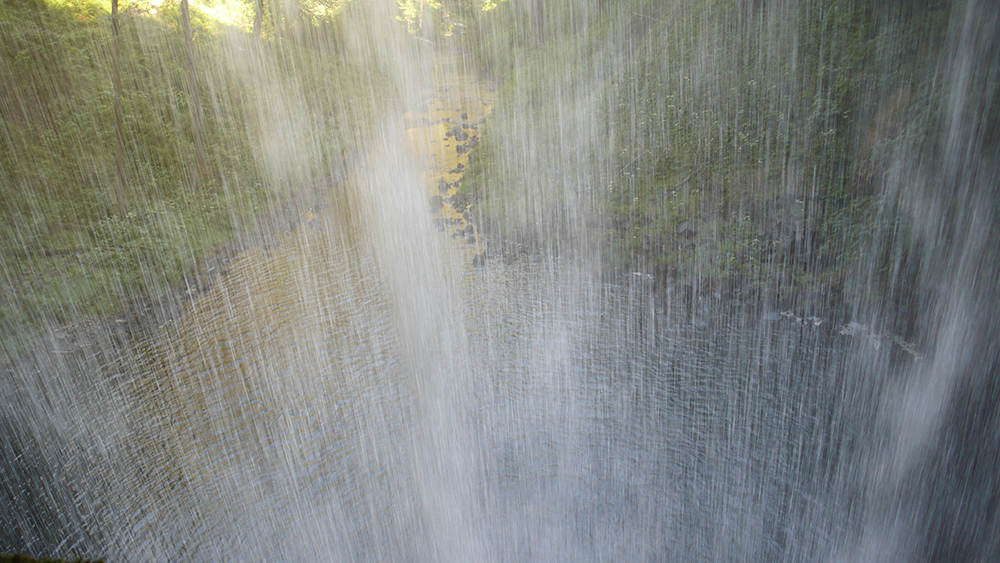 The view from behind a water fall at Silver Falls State Park. Photo by Ancil Nance