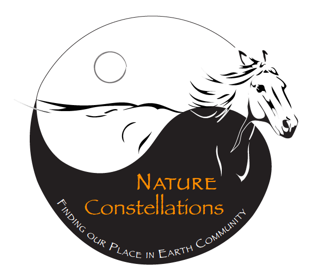 Nature Const Logo.png