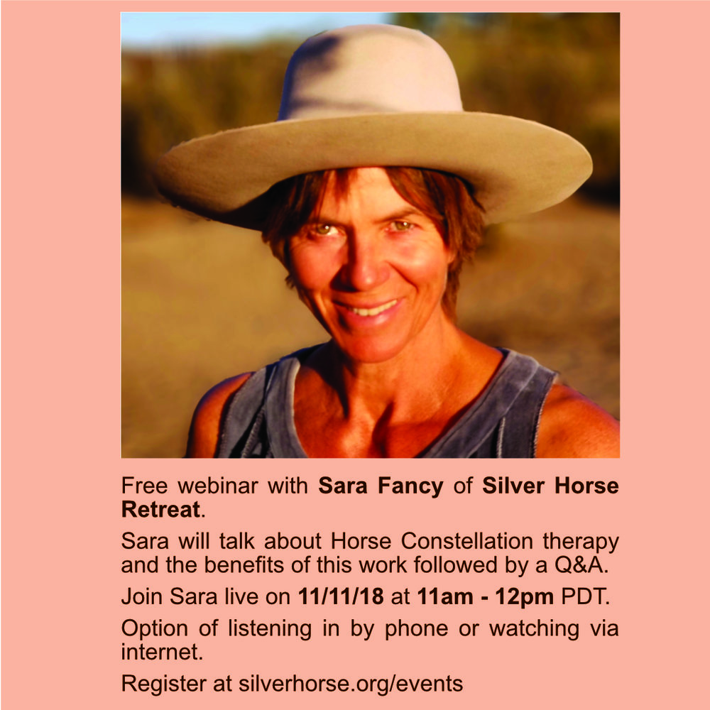 This is a great opportunity to hear from Sara Fancy live about the specialized equine therapy she has been facilitating for the past ten years. Sara will explain what a Horse Constellation is and the benefits this therapy has on people who've experienced it.  Please register by filling out the form below.