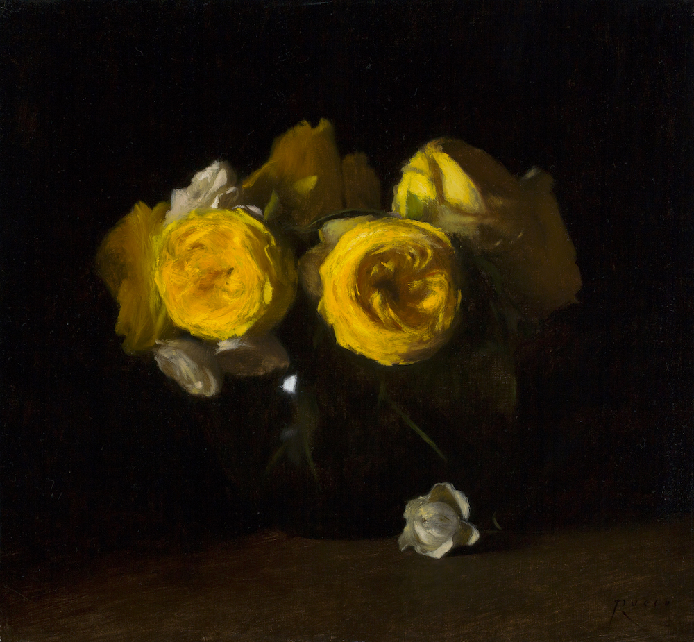 Yellow Catalina Roses