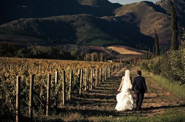 wedding-in-south-africa.jpg