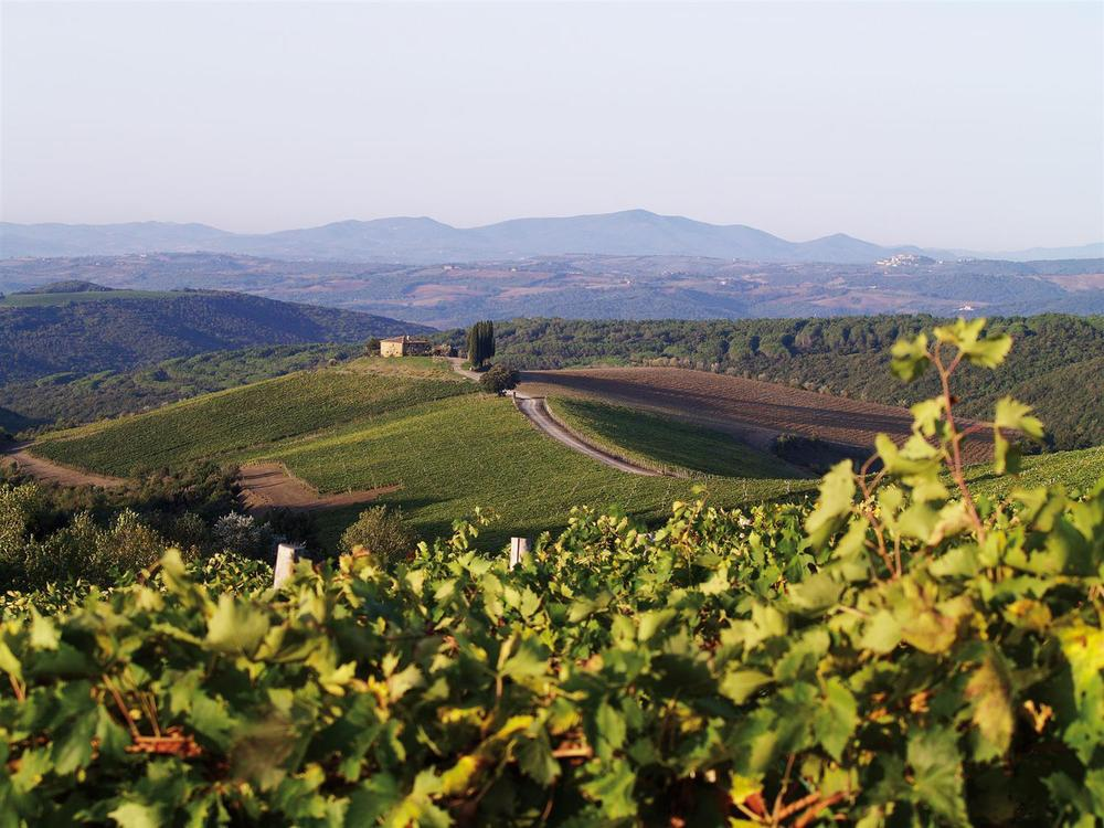Italy fields travel