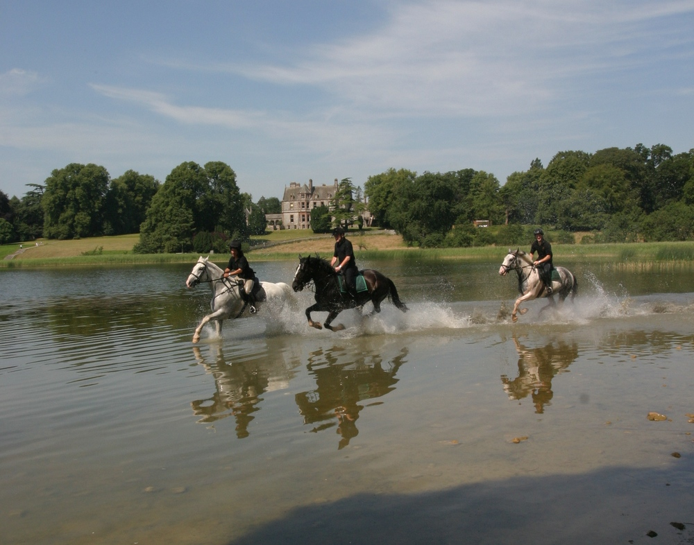 irish castle horses and water.jpg