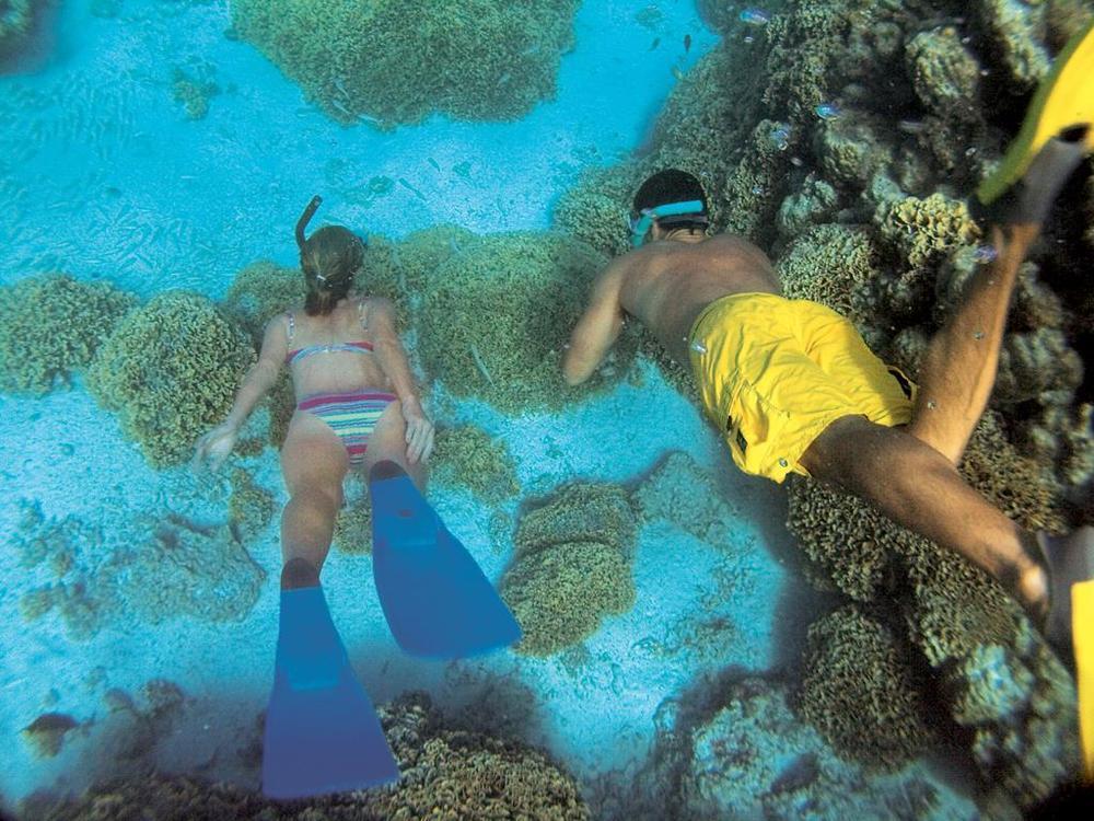 PG diving.jpg