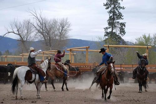 Triple Creek Ranch Team Penning