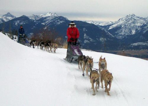 Triple Creek Ranch Dogsledding