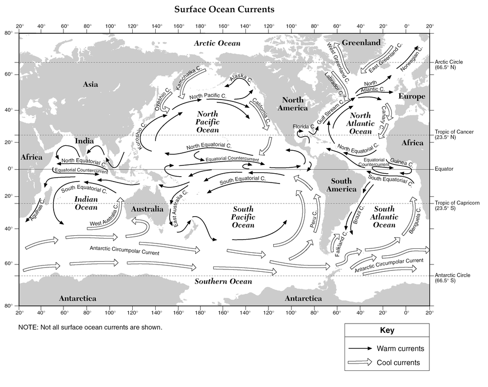 The direction of the major surface currents is generallyconstant ...