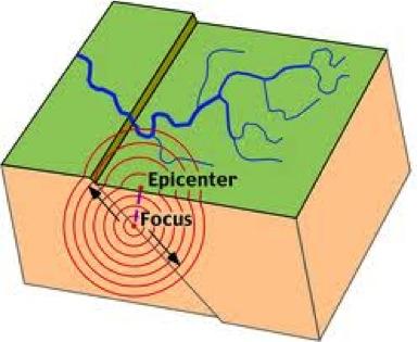 epifocus.jpg