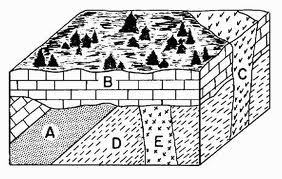 5 laws of relative age dating High school earth science/relative ages of rocks from wikibooks which of steno's laws is illustrated by each of the following images in figure 1118.