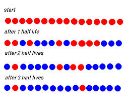 How do scientists use half lives in radiometric dating