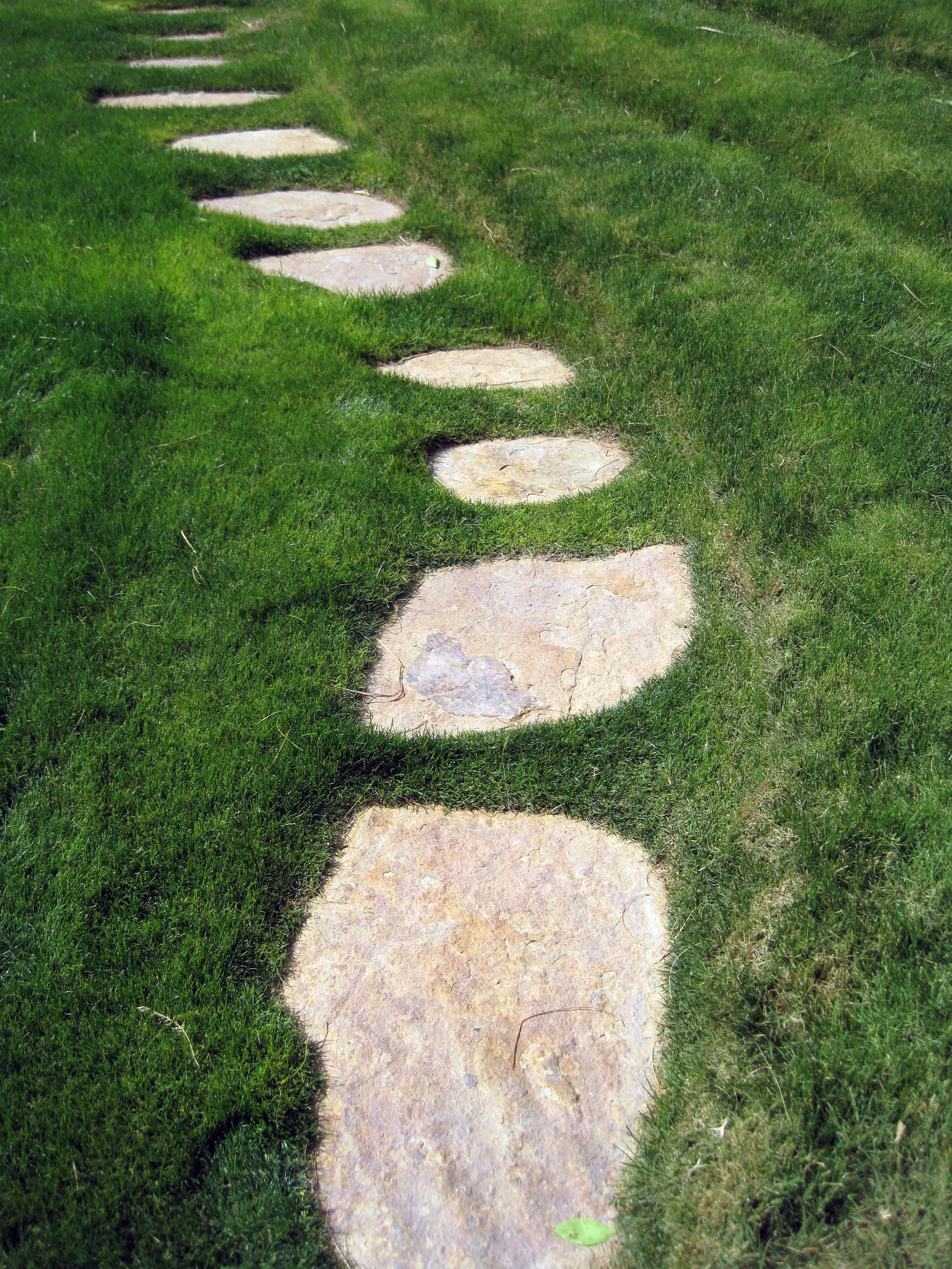 Stone Pathway and Journey Forward