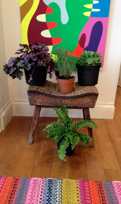 The fruits of our trip: a beaten up old stool and some new plants for our (tiny) garden