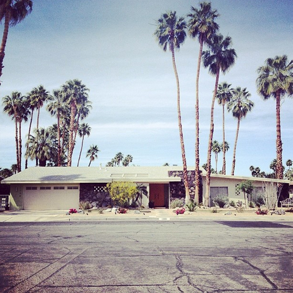 I love everything about this midcentury modern desert scene