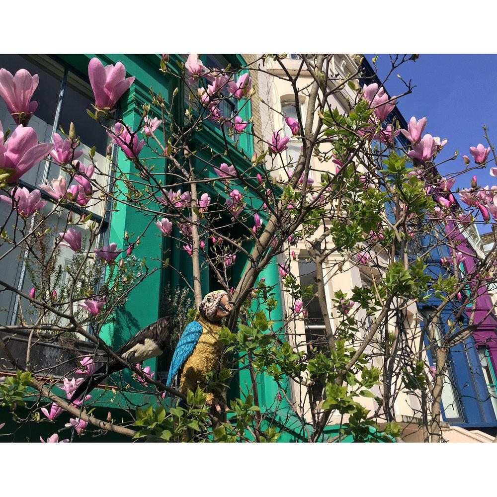 LizNehdi_NottingHill_Turquoise+Magnolia1.jpg