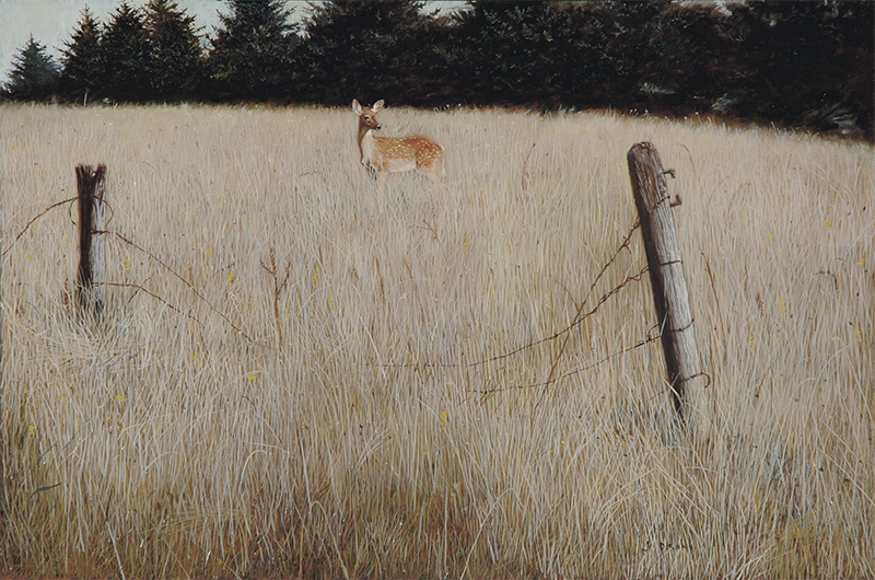 Deer Crossing - gicleé 20 x 30 inches, $650