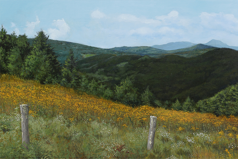 Golden Pastures - oil on linen, 24 x 36""