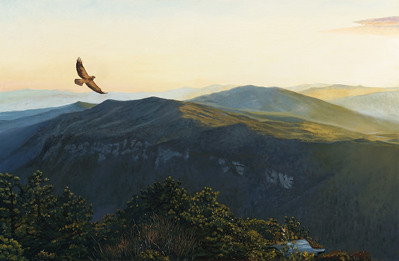 "Soaring Over Hawksbill    - oil on linen, 26 x 40"" Sold"