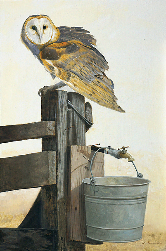 Reluctance - Barn Owl - oil on panel, 30 x 20""