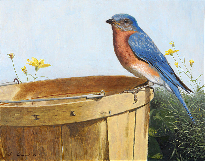 Visit From a Bluebird - oil